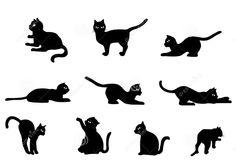 Dreamstime.com #cats