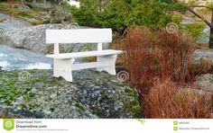 White wooden bench, on the rocks covered with green moss. North Sea Coast. Norwegian autumn. Telemark region of Norway