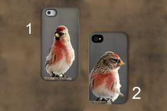 Bird Photography Phone case,common redpoll bird phone case,ipad case,unique photography,nature photography,iPhone case,Samsung Galaxy case, by VanillaExtinction on Etsy