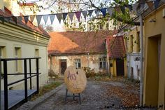 Quirky, alternative Vilnius - Kami and the Rest of the World