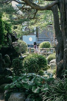Japanese Garden Inspiration | Old Faithful Shop