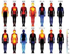 フィンランド・アールト大学 (Aalto University) の生物医学チームが全米科学アカデミーに発表、人間の各感情が体のどこで感じられるかを視覚化した「Bodily maps of emotions」