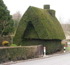 House topiary