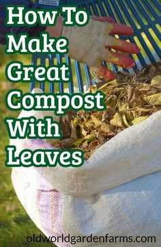 Leaves - How To Make Great Compost From Leaves This Fall! How To Use Fall's Leaves To Make Great Compost - what to add and what not to add. How To Use Fall's Leaves To Make Great Compost - what to add and what not to add. Garden Compost, Garden Pests, Vegetable Gardening, Flower Gardening, Balcony Gardening, Herbs Garden, Garden Tips, Organic Vegetables, Growing Vegetables