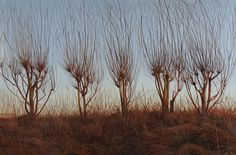 """Young Willows"" Acrylic on Board"