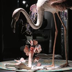 Lost Beauty, Bertozzi&Casoni, Flamingo, unique piece