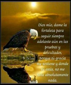 Oración de fortaleza. Gods Love Quotes, Quotes About God, Positive Phrases, Motivational Phrases, Healing Words, Morning Prayers, God Prayer, God Loves You, Prayer Warrior
