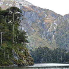Parque Nacional Huerquehue  Caburgua  Región de la Araucania Chile. by chile_fotos