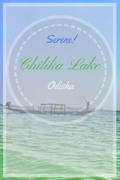 "Have you heard about the largest brackish water lake in #asia in Odisha?? Read more about - ""Serene Chilika Lake"" in Odisha, India #chilikalake #lake #odisha #india #travel"