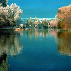 Glad to call Bend, Oregon our home.