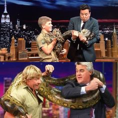 Steve Irwin's son Robert brings wildlife onto 'The Tonight Show'  Steve Irwin's son Robert Irwin stopped by The Tonight Show onThursday alongside a collection of furry friends to share his love of animals.  #TheCrocodileHunter #BindiIrwin #JimmyFallon #SteveIrwin #TheTonightShow @TheCrocodileHunter