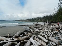 Pacific Rim National Park Reserve on Vancouver Island's scenic west coast is a must-do for families visiting Vancouver Island. The park is divided in to three sections: Long Beach, Broken Island Group, Pacific Beach, Pacific Rim, Pacific Northwest, Visit Vancouver, Vancouver Island, Yellowstone National Park, National Parks, Best Family Vacation Destinations, West Coast Trail