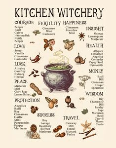 Kitchen Witchery: Classic Herbs Found in a Witch's Pantry – Anima Mundi Herbals Witchcraft Herbs, Witchcraft Spell Books, Green Witchcraft, Wiccan Magic, Wiccan Spells, Magick, Magic Spells, Magic Herbs, Herbal Magic