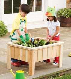 Small garden for the kids...  Love this idea!!
