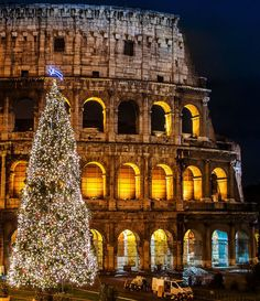 Christmas at Coliseum of Rome http://imgsnpics.com/christmas-at-coliseum-of-rome/