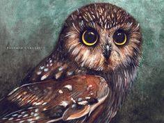 Water Owl by ~VanillaSnowflake
