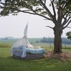 How would you like to have an afternoon nap here?