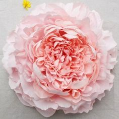 Learn how to make these huge peony piñatas from start to finish. I dare you to break one open!