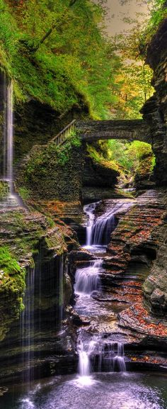 Watkins Glen State Park, New York State, USA