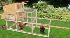 tracteur à poules dans un jardin                                                                                                                                                                                 Plus