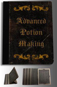 Ipad cover, Harry Potter