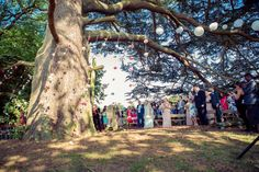 Our outdoor wedding chapel under a cedar tree, complete with strung flowers hanging from branches