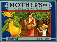 California Fruit Labels | vintage fruit crate label
