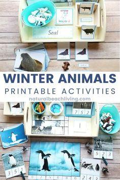 Kindergarten Math Activities, Preschool Themes, Montessori Activities, Winter Thema, Wallpaper Winter, Blog, Winter Season, Hands, Preschool Winter