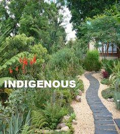 Landscape Garden Types Indigenous