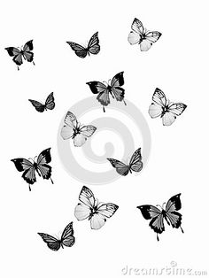 Butterfly Vintage - Download From Over 26 Million High Quality Stock Photos, Images, Vectors. Sign up for FREE today. Image: 45474495