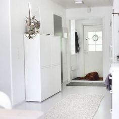 A new cupboard in! But it required a small renovation. More in the blog. #interiordesign #interior #cupboard #kitchen #home #homedecor #scandinaviandesign #scandinavianhomes #IKEA #eket #skandinaviskahem #skandinaavinen #instahome #inredning #inredningsdesign #renovation #renovering #remontointi #remontti #astiakaappi #kaapisto #hem #koti #sisustus #sisustaminen #instahem #design