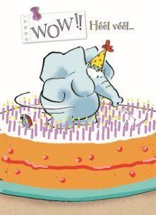 Wow!! Heel veel... plezier op je verjaardag!  #Hallmark #HallmarkNL #leendertjanvis #wenskaart