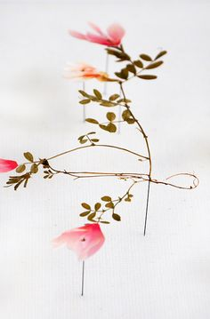 Flower constructions: Anne Ten Donkelaar
