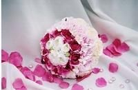 Chose from many colors for your perfect bridal bouquet. artisticfloraldesign.com