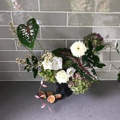 More local Northern Rivers beauty's on the bench today. Rivers, Floral Wreath, Bench, Wreaths, Modern, Beauty, Home Decor, Trendy Tree, Decoration Home