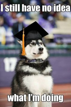 This will be me when I graduate