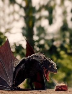 Game of thrones -  Baby Drogon