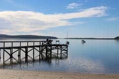 St Helen's, Tasmania Tasmania, Places Ive Been, Australia, World, Travel, Viajes, Destinations, The World, Traveling