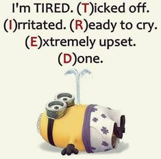Funny Minion Pictures Of The Week