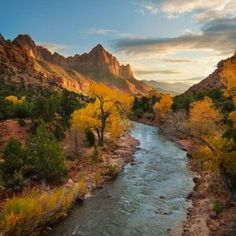 Raise your hand if you've been to Zion. Photo by (at Zion National Park, Springdale, Ut) Zion National Park, National Parks, Camping Life, Places To See, Utah, Travel Inspiration, Adventure, Outdoor, Folk