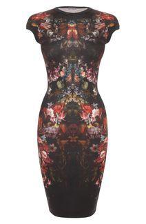 Alexander McQueen Painted Flowers Cap-Sleeve Pencil Dress £695.00 - stunning - masterpiece