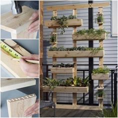 """Ever wanted to create your own Inspired """"Living Wall""""? Here's a step by step tutorial, oh & feel free to share pics of YOUR Living wall creations too!! **Share to Save**"""