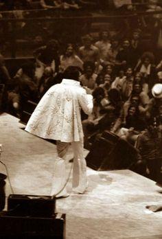 Elvis - MSG