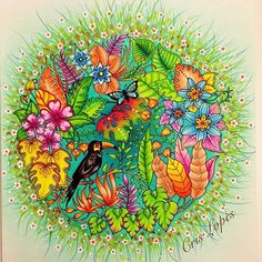 #uau!! use #colorindolivrostop @Regrann from @crislopez745 - Magical Jungle - Johanna Basford Colorido feito para o concurso. ❤️ #ginapafiadache #carolpafiadache #staedtler #staedtlerpencils #colors #pensils #magicaljungle #johannabasford #Regrann