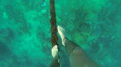 I like to slack line under water.  #adventure #goprophotography #goprolife #GoPro #slackline #greatbarrierreef #cairns #thisisqueensland #travels #australia by mitch_gopro http://ift.tt/1UokkV2