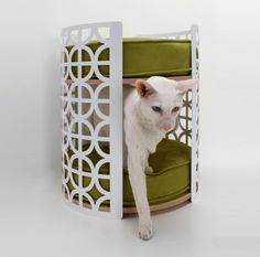 Two story kitty Bed. $295.
