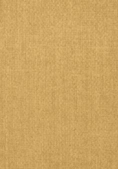 TOBAGO WEAVE, Tobacco, T57113, Collection Texture Resource 5 from Thibaut