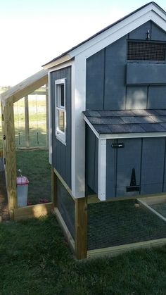 Chicken coop with swing
