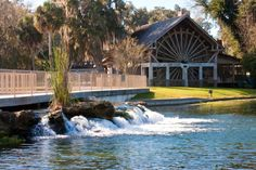 26. De Leon Springs State Park:  This park is perfect for swimming and canoeing, and it's home to a pancake house with a DIY twist: a griddle in every table allows patrons to flip their own flapjacks.