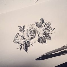 : Roses design  #design #drawing #rose #tattoo #tattooistdoy #타투 #타투이스트도이 #타투도안 #Padgram
